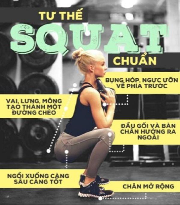 các tư thế cơ bản của Squat