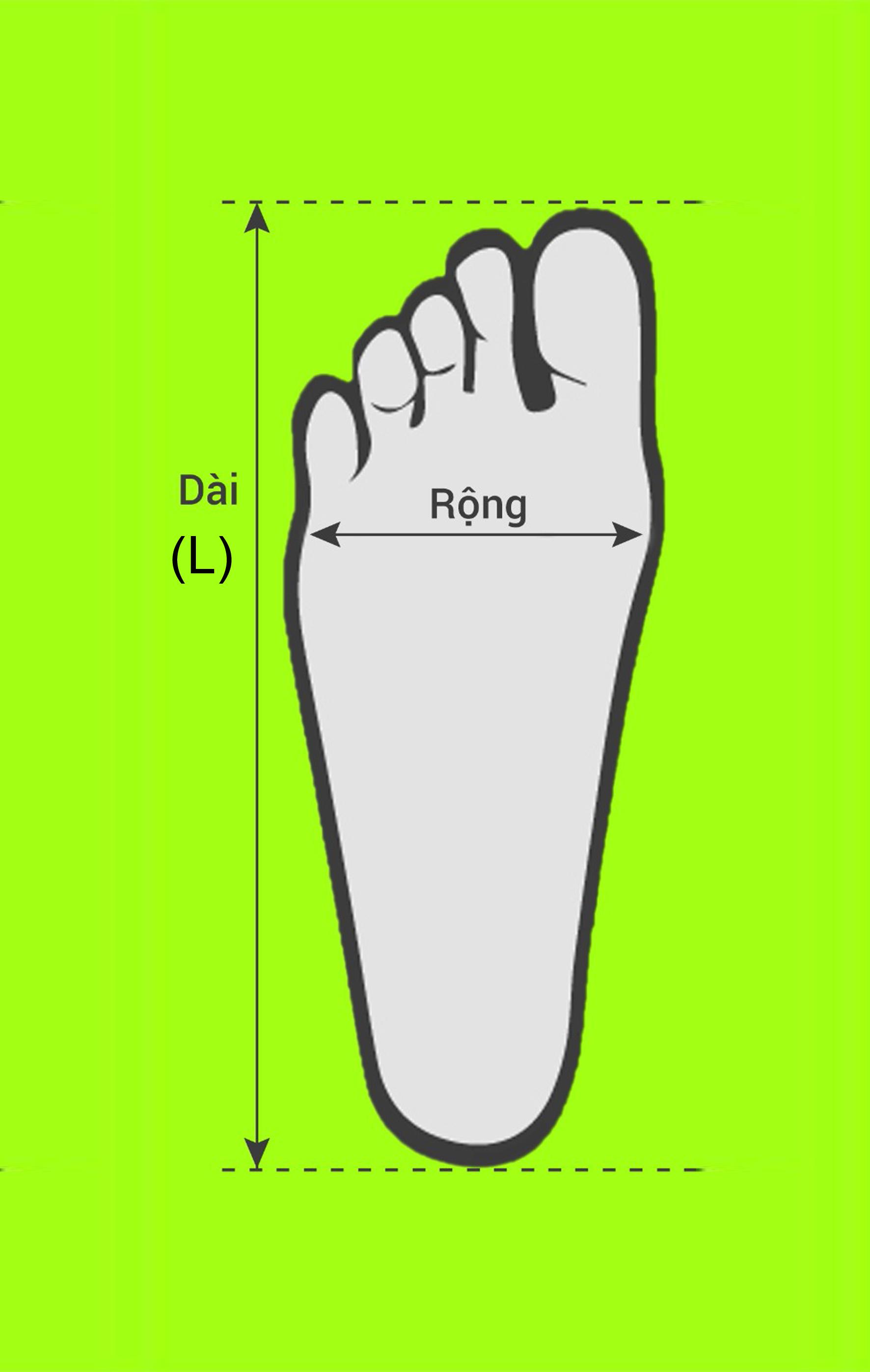 Đo điểm đầu ngón chân dài nhất và điểm ở gót chân